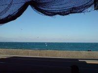 びんび家 店の前の海